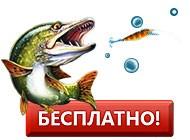 Подробнее об игре На рыбалку!